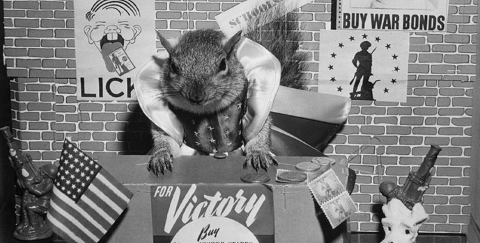 Tommy Tucker Squirrel - Photo courtesy of the National Museum of American History.