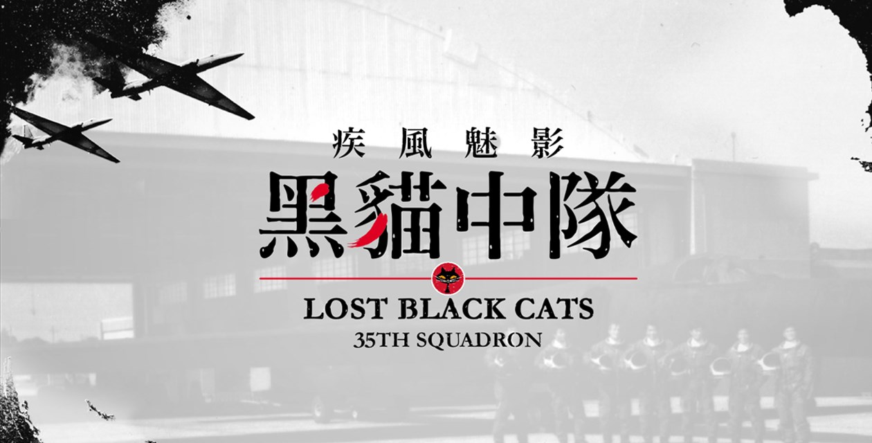 Lost Black Cats