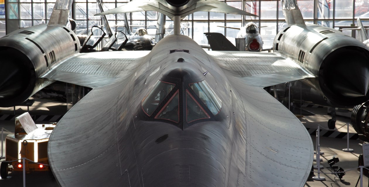 Blackbird Tip-to-Tail Tours