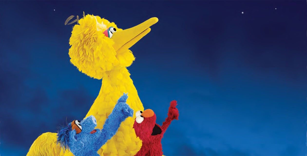 One World, One Sky: Big Bird's Adventure